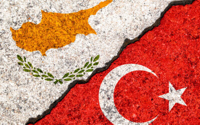 """""""Developed States Have Been Trying To Remove Turkey From Cyprus For A Long Time"""""""